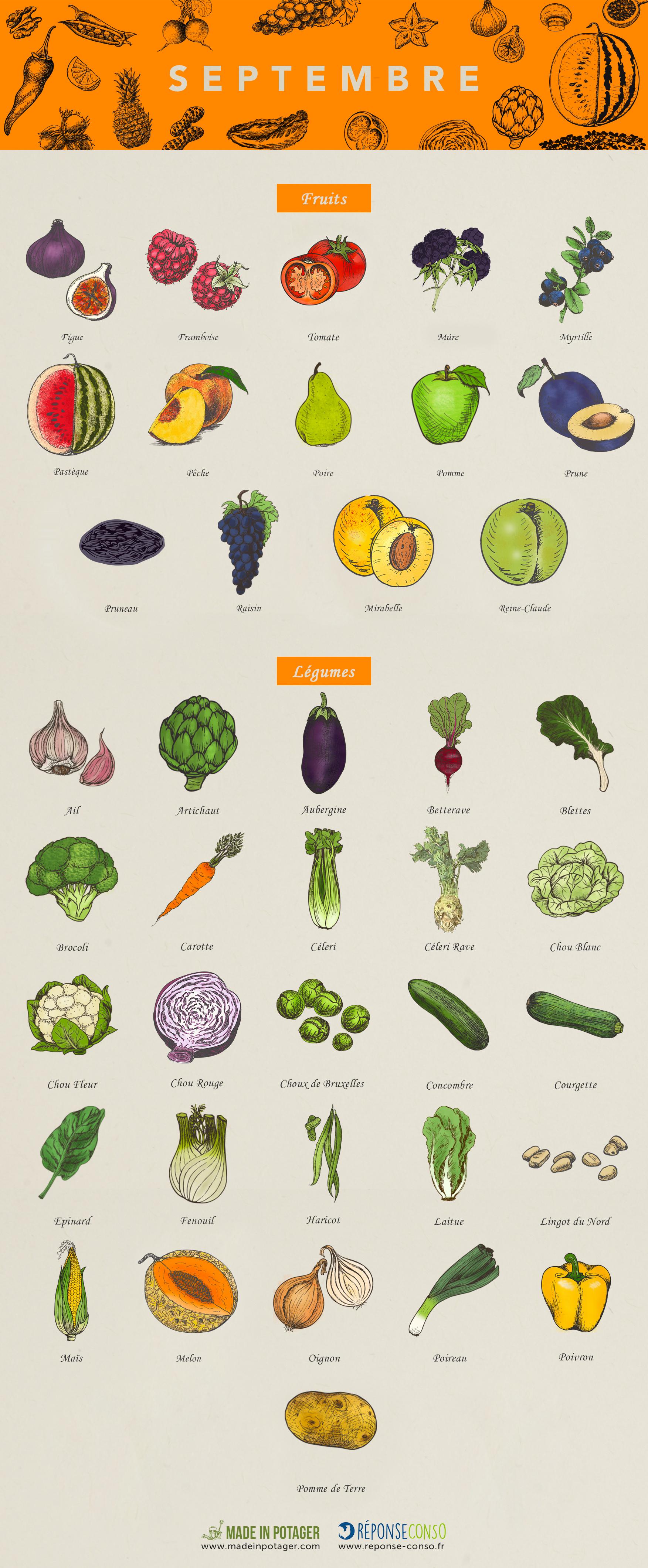 Septembre : les fruits et légumes de saison