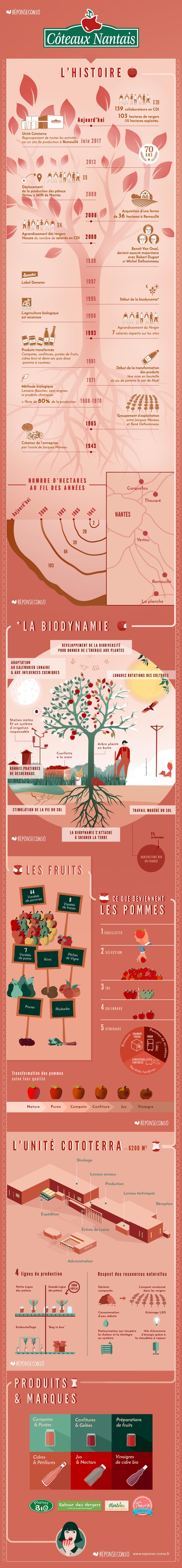 Infographie de l'histoire des Côteaux Nantais