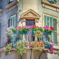 Fleurir son balcon : certaines règles sont à respecter
