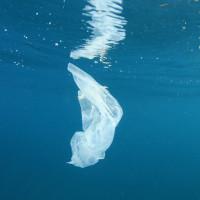 Chili : un sac en plastique soluble dans l'eau et non polluant